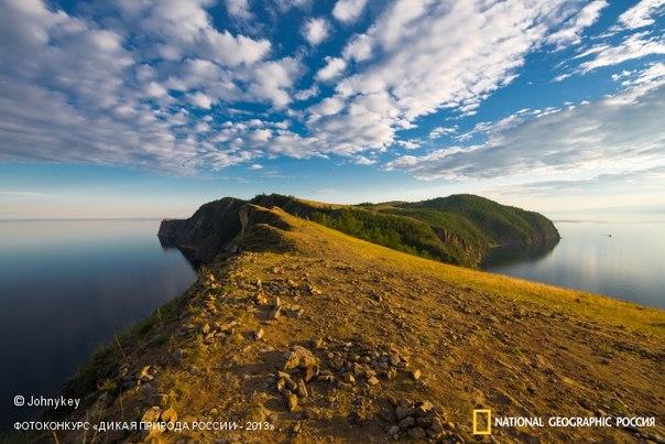 Победители фотоконкурса «Дикая природа России 2013» от National Geographic