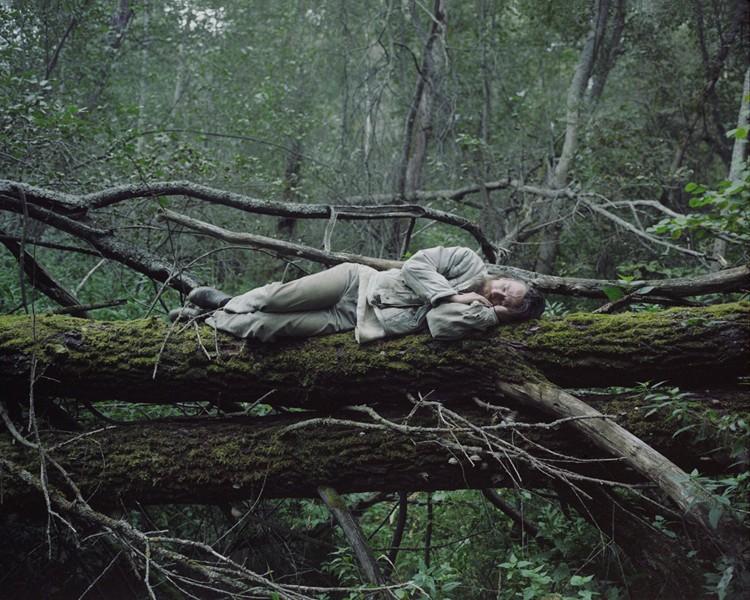 Отшельник, спящий на дереве