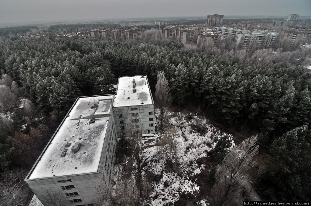 Зимняя природа в Припяти имеет свой шарм