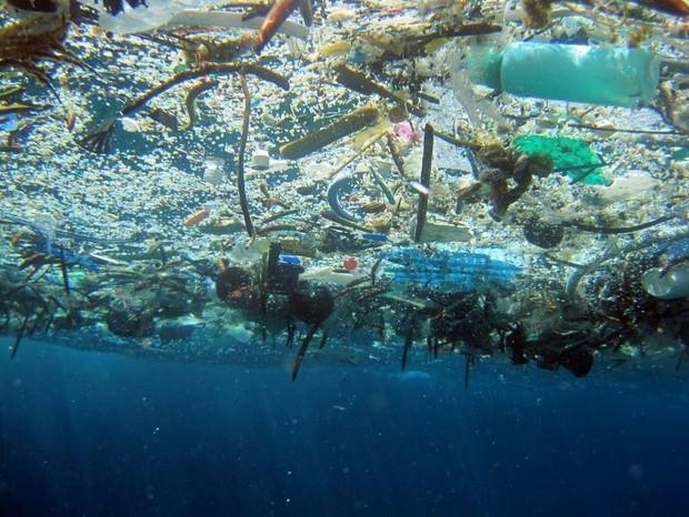 Пластиковый Материк