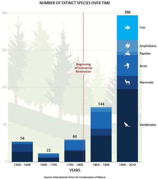 Исчезновение живых видов в Антропоцене