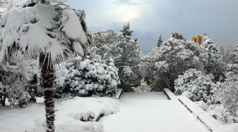 Парк Дендрарий под снегом