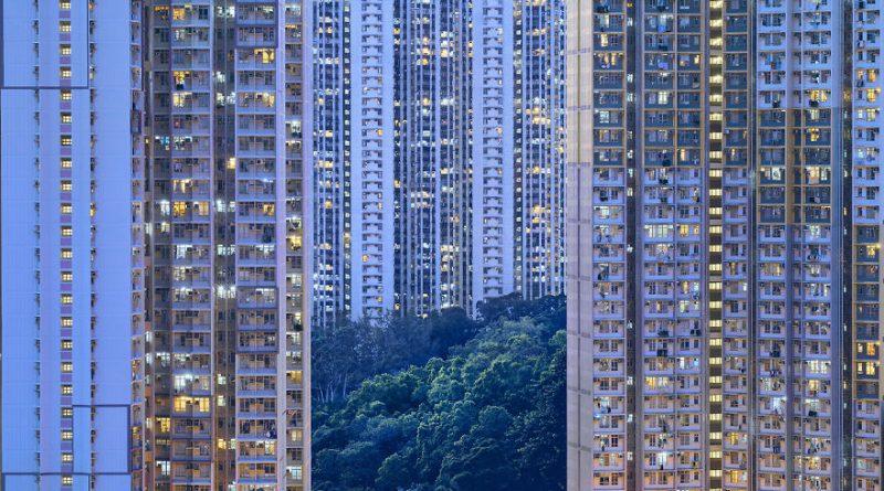 Зелень на фоне небоскрёбов