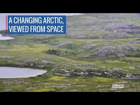 NASA: Арктика зеленеет