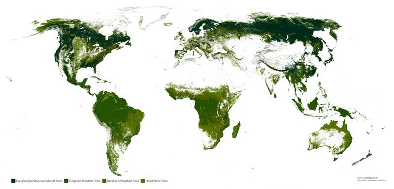 Леса планеты