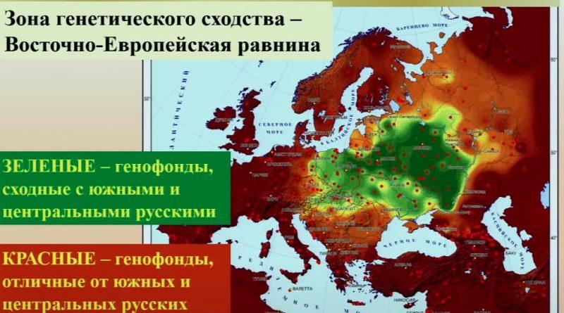 Различия между русскими, украинцами, белорусами и поляками